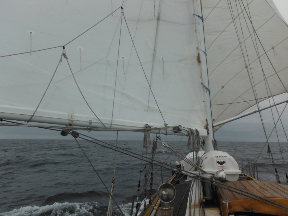 Here we are sailing wing and wing.  Gathering all the wind we can for the hard charge North.