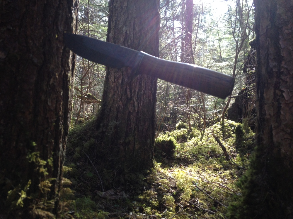 My blade at work in the woods this spring.