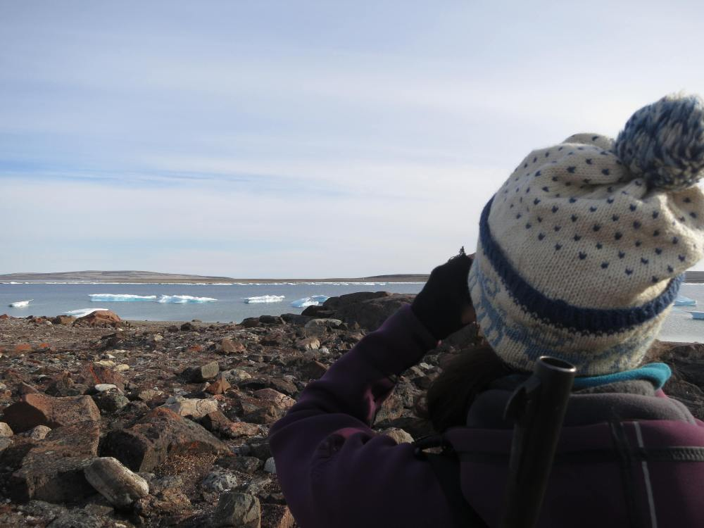 Samantha viewing some polar bears on the far shore.